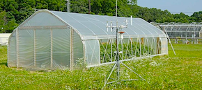 High Tunnels in New Jersey