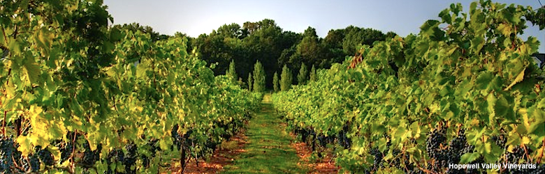 New-Jersey-Wineries