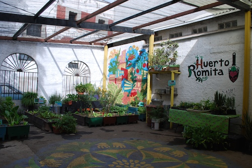 Huerto Romita a urban agriculture project in the La Romita section of Colonia Roma, Mexico City. Photo: Alejandro Linares Garcia