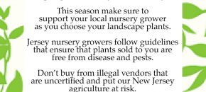Farm Calls: What You Can Do to Stop Illegal Nursery Stock Hucksters