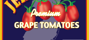 Improving Quality & Competitiveness of Jersey Tomatoes