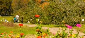 Is Your Town Farm Friendly? A Checklist