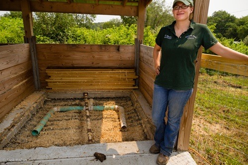 Aerated Bin Composting Demo Photo Gallery Sustainable