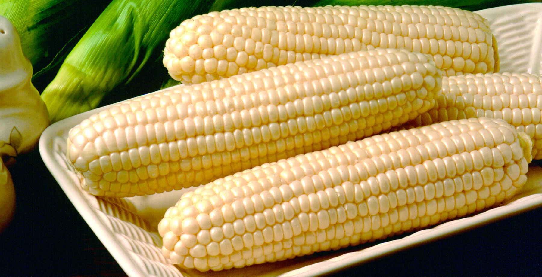 farm calls  sweet corn varieties  u0026 postharvest capability