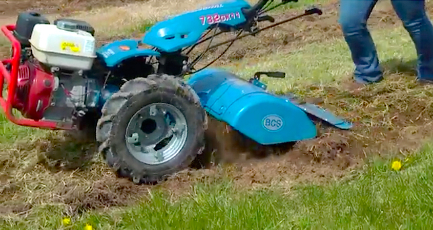 Primary tillage using a walk-behind two-wheeled tractor.