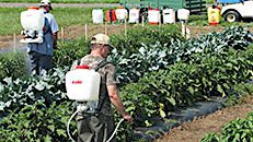Backpack Sprayer Technology Workshop